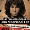 plakat_32_jimmorrison